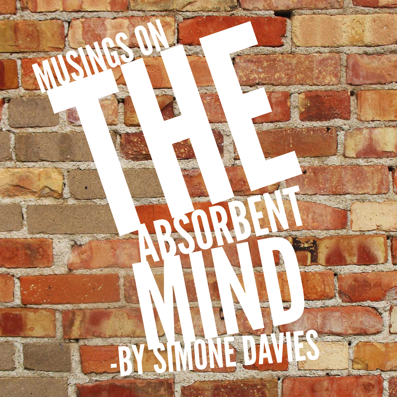 musings on the absorbent mind