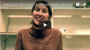 The advent of calm Montessori style – a 1 minute video each day to help you stay calm over the holiday period