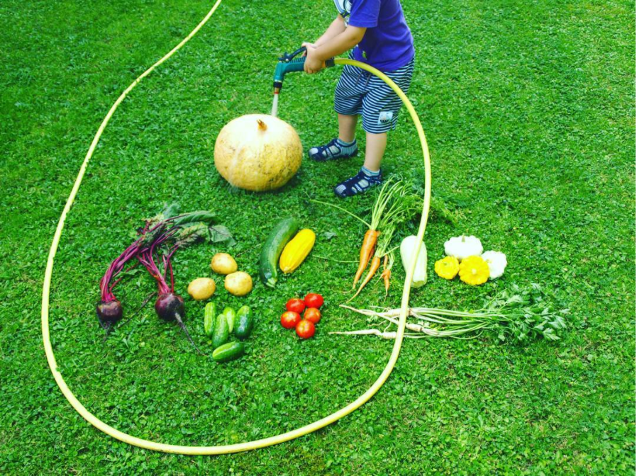 washing vegetables with a hose